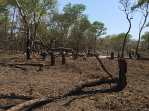Drought in Mozambique by Kepa is licensed under CC BY-NC 2.0